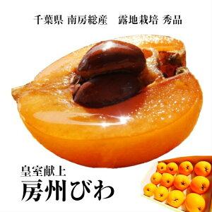 【父の日ギフト】千葉県南房総産『房州びわ』露地栽培3Lサイズ12個入り化粧箱入り