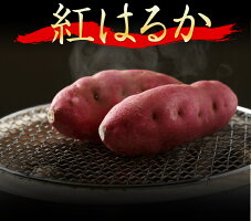 令和元年度産新紅はるか!紅はるかべにはるか10kg鹿児島県産