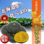 【送料無料】北海道産ほくほくかぼちゃ10kg(5~6玉)