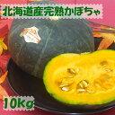 大人気★北海道産ほくほくかぼちゃ 10kg(4玉〜8玉) ★ 【 送料無料 】