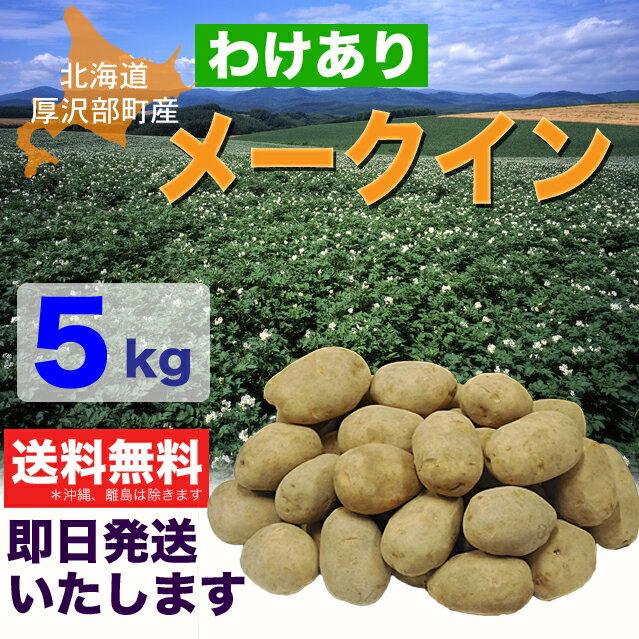 【訳あり】北海道厚沢部町産じゃがいも「メークイン」5kg