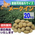 【送料無料】業務用規格外サイズメークイン20kg