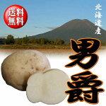 【送料無料】北海道産だんしゃくLサイズ10kg