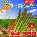 【送料無料】北海道産グリーンアスパラ Lサイズ1.5kg(1...