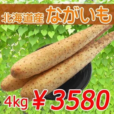 【送料無料】北海道産ながいも4kg【厳選してます!】