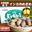 【送料無料】北海道産インカのめざめLサイズ5kg【数量限定】