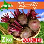 【送料無料】北海道産ビーツ1kg【希少】