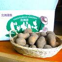【送料無料】北海道産インカのめざめMサイズ10kg【数量限定】
