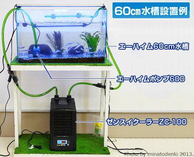 エーハイム水中ポンプコンパクトポンプ600(流量220〜600L/h、淡水・海水両用)[EHEIM]