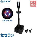 ゼンスイ 噴水型ウォータークリーナー 『セセラン』 (LED照明付き/100V) [池用 濾過器 ろ過器 ろ過装置][r10][s1-080]