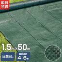 高密度135G 防草シート 1.5m×50m モスグリーン ...