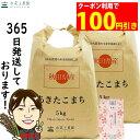 【おまけ付き】【クーポン配布中】秋田県産 農家直送 あきたこまち 精米10kg(5kg×2袋)令和2年産 / 古代米お試