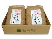 秋田県井川町産農家直送特別栽培米『さくらこまち』10kg(5kg×2袋)平成28年産新米
