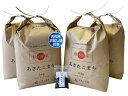 新米【精米】秋田県産 農家直送 あきたこまち 子どもに食べさせたいお米 20kg(5kg×4袋)令和...
