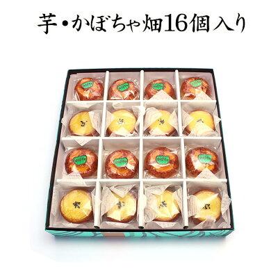 芋・かぼちゃ畑16個入り【秋の味覚】【楽ギフ_のし宛書】