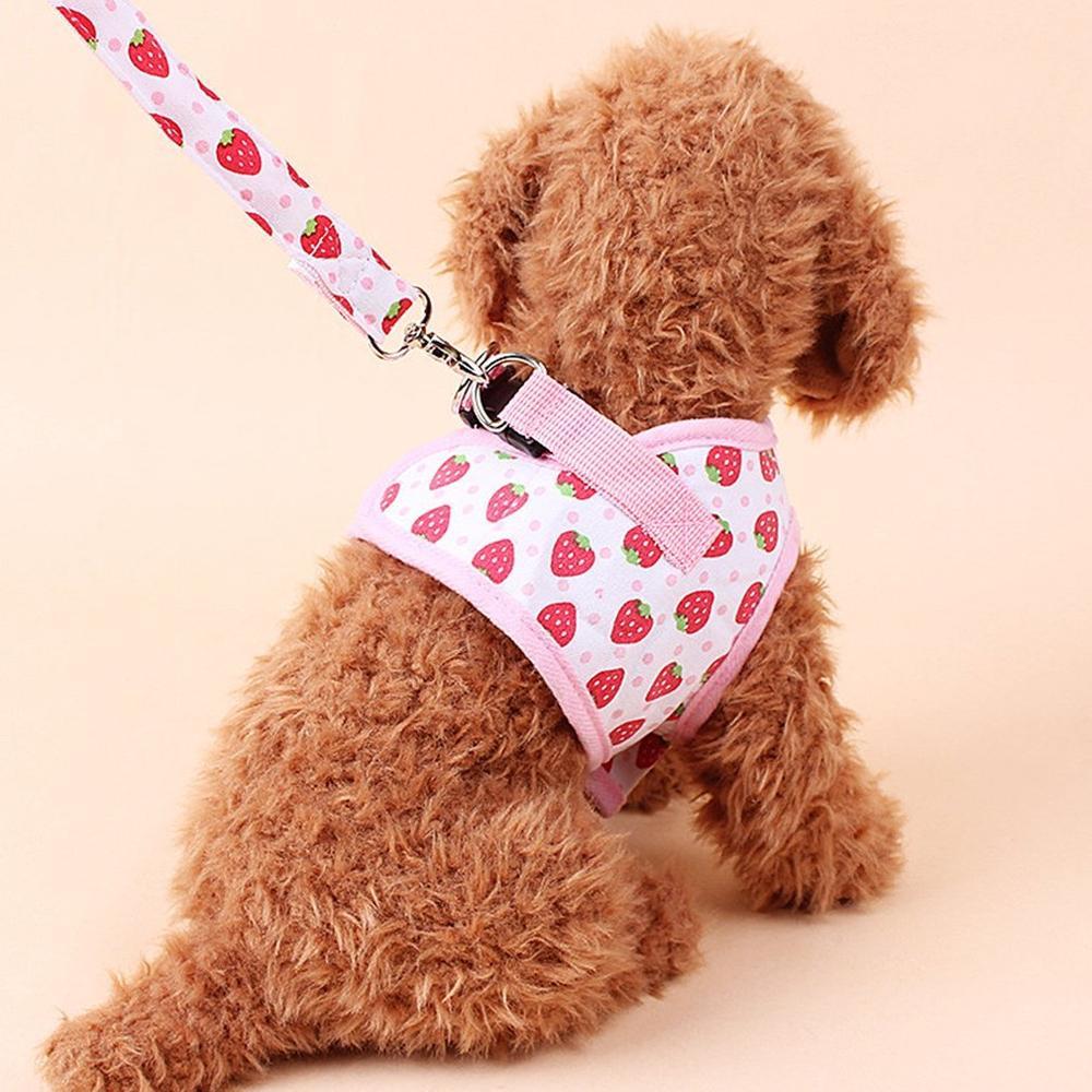 小型犬 カラフル ストロベリー イチゴ 柄 リード & ハーネス セット 散歩 胸あて ソフト 軽量 クッションメッシュ 首輪 ペット用品 ctr-c82