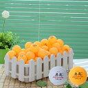 卓球 ボール 大量 100個 セット ピンポン 玉 送料無料 白、オレンジ 二色可選 練習用 学校 クラブ