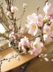 年始の贈り物に春を感じる冬に咲く桜1月9日よりお届け奈良吉野啓翁桜  プレゼントに お祝い事の贈り物に  贈り物に最適【送料無料】桜:『啓翁桜(けいおうさくら)』桜の花束 ギフト贈り物に最適です。