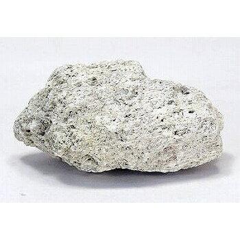 鈴虫の天然軽石