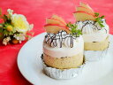 りんごと紅茶のケーキ(卵・乳・小麦アレルギー)...