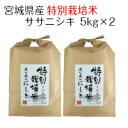 お米 白米 宮城県産 特別栽培米 ササニシキ 10kg(5kg×2) 令和2年産 送料無料(北海道・沖縄は除く)