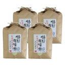 お米 白米 新潟県佐渡産 特別栽培米 コシヒカリ 20kg (5kg×4)令和2年産 送料無料(北海道・沖縄は除く)