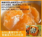 内皮付き国産みかんの缶詰 愛媛県みかん農家自家製 薬品処理なし【RCP】
