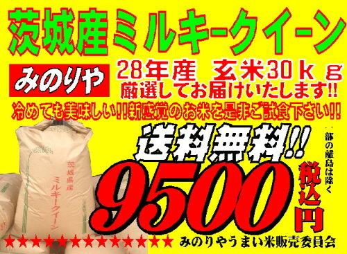 ミルキークィーン 茨城県産 28年産 玄米 30Kg 精米無料 送料無料 【あす楽...