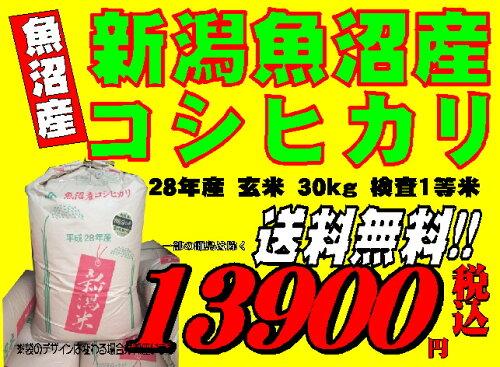 新潟魚沼産 コシヒカリ 玄米 30kg 平成28年産 検査一等米お米 精米無料 送料無料 ...