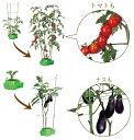 【送料無料】家庭菜園(水耕栽培)キット『私の畑』(ポットタイプ)