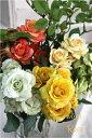 ガーデン・ペット・DIY通販専門店ランキング16位 ローズピック・C 36112 造花 インテリア シルクフラワー アートフラワー フェイクグリーン 観葉植物