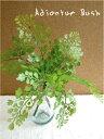 アジアンタムブッシュ 観葉植物 造花 未触媒 器なし 3586