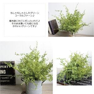 コーラルファーンブッシュ42501造花フェイクグリーンCT触媒
