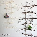 ツイッグラダー 4146造花 インテリア 観葉植物 フェイクグリーン 未触媒 器なし