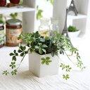 【店内全品 ポイント10倍】L.シサスアイビー シュガーバイン 造花 インテリア ミニ フェイクグリーン 観葉植物 人工