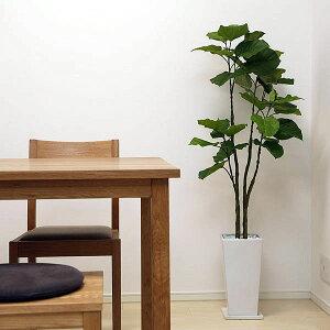ウンベラータ130cm白スクエア皿付k-12造花観葉植物インテリア大型ギフトお祝い新築祝い引越し祝い送料無料