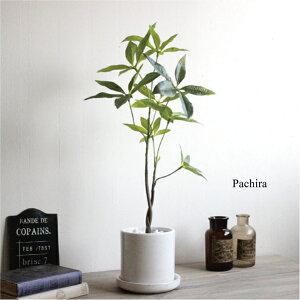 パキラ H52 貫入鉢皿付 造花 ...