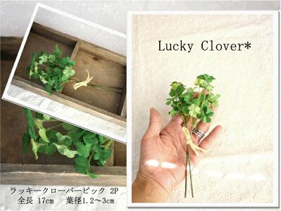 ラッキークローバーピック♪2P【造花・未触媒】【器なし】