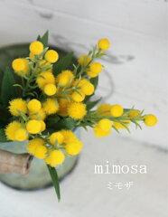 ミモザ 造花 ミモザ 6P フラワーピック 31293 P20Feb16