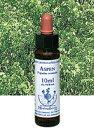 【ネコポスで送料無料】Healing Herbs No.4 アスペンエキス 10ml[HealingHerbs(ヒーリングハーブス) フ...