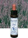 【ネコポスで送料無料】Healing Herbs No.21 ヘザーエキス 10ml[HealingHerbs(ヒーリングハーブス) フラ...