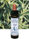 【ネコポスで送料無料】Healing Herbs No.29 スイートチェストナットエキス 10ml[HealingHerbs(ヒーリン...