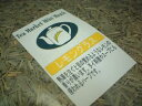 Lemon-grass500