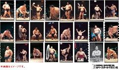 【11月28日発売予定:大相撲カード】◆予約◆送料無料 BBM 2015 大相撲カードレジェンド『至宝...