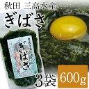 海藻類 栄養