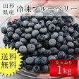 【送料無料】国産冷凍ブルーベリー 1kg /山形県産/ブルーベリー/フルーツ/ 05P03Dec16