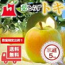 送料無料 青森県産 葉とらずトキ ご家庭用約5kg (約14〜18個)人気の訳あり品[※産地直送・同梱不可]希少高級品種。数量限定!