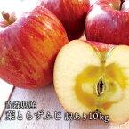 送料無料 青森県産 葉とらずふじ ご家庭用10kg (約28〜36個)人気の訳ありリンゴ 青森産 訳あり サンふじ