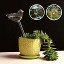 「ウォーターキーパー」水やり 植物給水機観葉植物 花ガーデニングガラス製