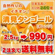 クーポン オレンジ サービス